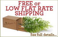 click here to see if your order qualifies for free shipping